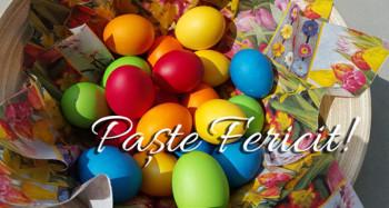 paste1